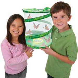 butterfly-garden-product