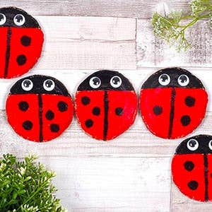 Insect Craft Projects