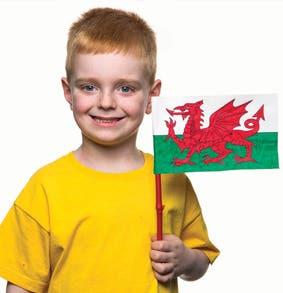 St-Davids-welsh-flag